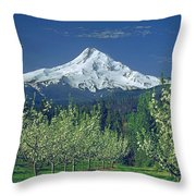 1m5125-mt. Hood In Spring Throw Pillow