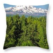 Mt. Hood Vertical Throw Pillow