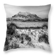 Mt Illimani In Monochrome Throw Pillow
