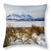 Mt Illimani In Winter Throw Pillow