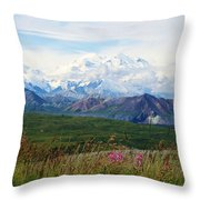 Mt. Mckinley Denali National Park Throw Pillow