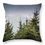 Mt. Mitchell In Fog Throw Pillow