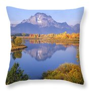 1m9234-mt. Moran Reflection, Wy Throw Pillow