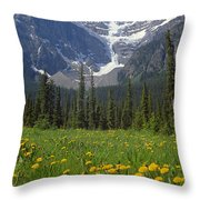 1m3613-mt. Patterson And The Snowbird Glacier Throw Pillow