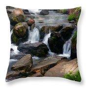 Mt Rainier Mountain Stream Throw Pillow