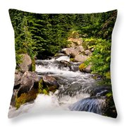 Mt. Rainier Waterfall Throw Pillow