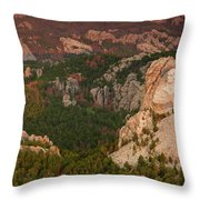 Mt. Rushmore With Beetlekill Ponderosa Throw Pillow