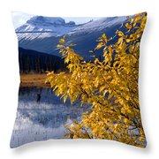 1m3626-mt. Saskatchewan In Fall Throw Pillow