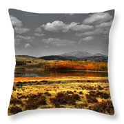 Mt. Silverhills In Silver Throw Pillow
