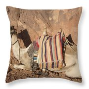 Mt. Sinai's Camel Throw Pillow