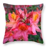 Mt St Helens Azalea Throw Pillow