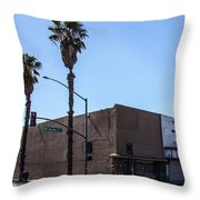 Mt. Vernon Street Throw Pillow