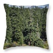Mt Washington Behind Clear Lake Throw Pillow