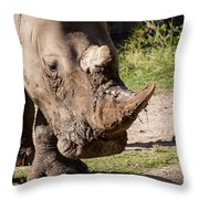Mud Lover Throw Pillow