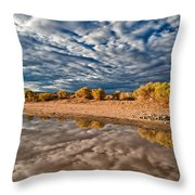 Mud Puddle Throw Pillow
