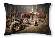 Mud Season - With Border Throw Pillow