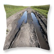 Muddy Country Road Throw Pillow