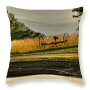 Muddy Pond Field Throw Pillow