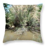 Muddy River Throw Pillow