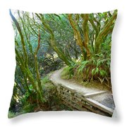 Curve In The Dipsea Throw Pillow