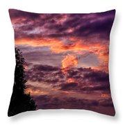 Mulberry Morning Throw Pillow