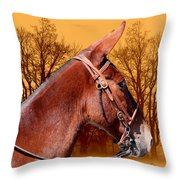 Mule Days - Westmoreland Tn  9-28-13 Throw Pillow
