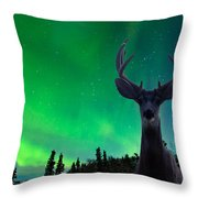 Mule Deer And Aurora Borealis Over Taiga Forest Throw Pillow