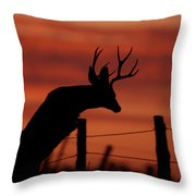 Mule Deer Buck Jumping Fence At Sunset Throw Pillow