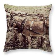 Mule Team Throw Pillow