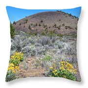 Mule's Ears And Schonchin Butte In Lava Beds Nmon-ca Throw Pillow