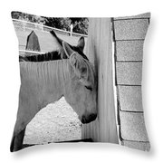 Mules Throw Pillow
