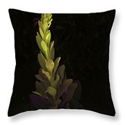 Mullein 2013 Throw Pillow