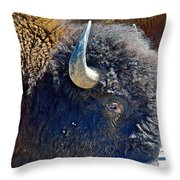 Multi-color-eyed Bison Near Wildlife Loop Road In Custer State Park-south Dakota Throw Pillow
