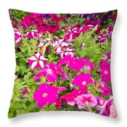 Multi-colored Blooming Petunias Background Throw Pillow