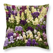 Multi-colored Blooms Throw Pillow