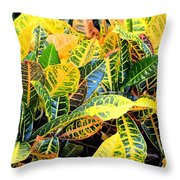 Multi-colored Croton Throw Pillow