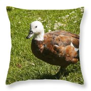 Multi-colored Paridise Duck Throw Pillow