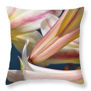 Multi-hued Lilies Throw Pillow