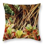 Multicolored Codiaeum Throw Pillow