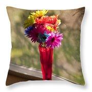 Multicolored Daisies On Window Sill Throw Pillow