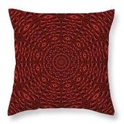 Multiplicity Mandala 16x9 Throw Pillow