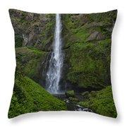 Multnomah Stream Throw Pillow