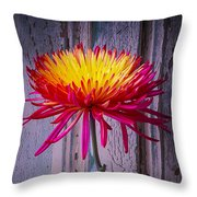 Mum Against Old Wall Throw Pillow