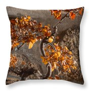 Mummified Bonsai Throw Pillow