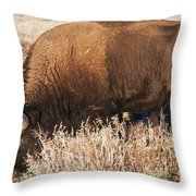 Munched A Bunch Throw Pillow