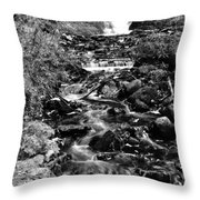 Munising Fall B And W Wash Throw Pillow