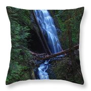 Murhut Falls Throw Pillow by Heike Ward