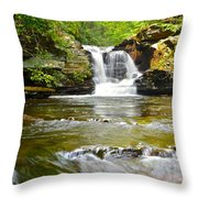 Murray Reynolds Throw Pillow