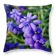 Muscari Throw Pillow