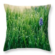 Muscari Or Grape Hyacinth Throw Pillow
